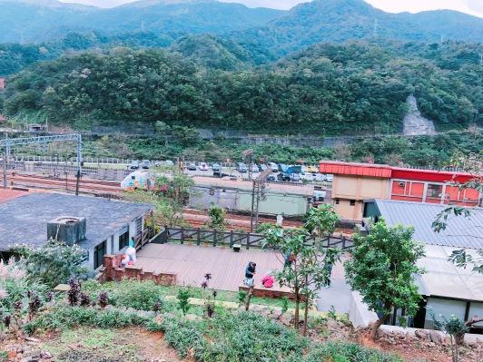 cat village taiwan43