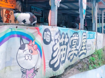 cat village taiwan34